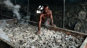A Bangladeshi man sorts tannery waste for poultry and fish feed. Picture: AP